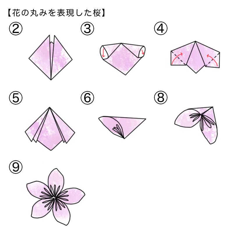 花の丸みを表現した桜の折り方