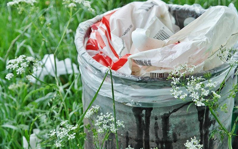 プラスチックと環境